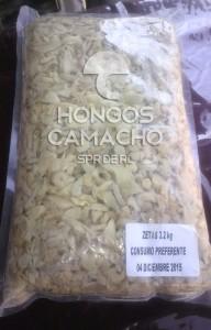 Venta de hongo seta en salmuera en México